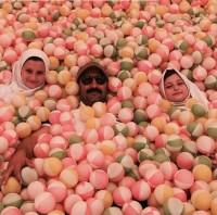 عکس محسن تنابنده و سارا و نیکا در استخر توپ