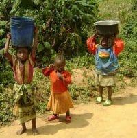 بچهها از جنگل آب میآورند!